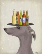Greyhound Grey Beer Lover