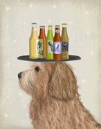 Labradoodle Gold 2 Beer Lover