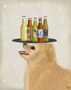 Pomeranian Yellow Beer Lover