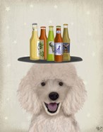 Poodle Beer Lover