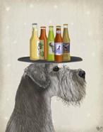 Schnauzer Grey Beer Lover