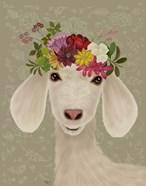 Goat Bohemian 2