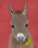 Donkey Yellow Flower