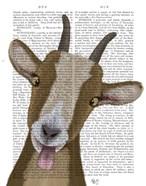 Funny Farm Goat 3 Book Print