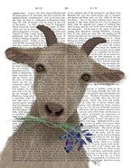 Goat and Bluebells Book Print