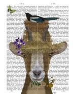 Goat In Straw Hat Book Print
