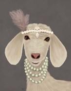 Posh White Goat