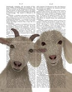 Goat Duo, Looking at You Book Print
