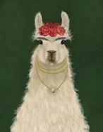 Llama F