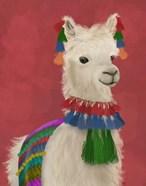 Llama Traditional 1, Portrait