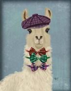 Llama Dapper