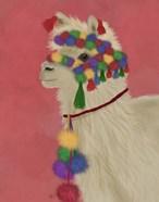 Llama Traditional 2, Portrait