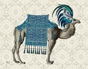 Niraj Camel, Blue