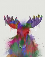 Moose Rainbow Splash