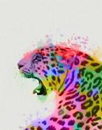 Leopard Rainbow Splash 2