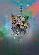 Cosmic Leopard
