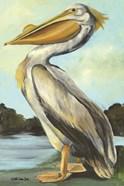 The Grand Pelican