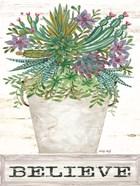 Believe Succulents