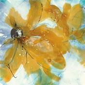 Amber Blue II
