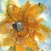 Amber Gold II