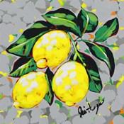 Fruit Sketch Lemons