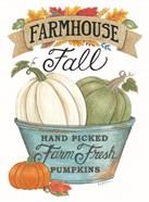 Farmhouse Fall Pumpkins