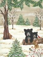 Bears & Bunnies