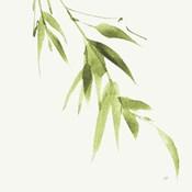 Bamboo VI Green