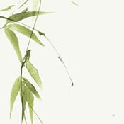 Bamboo V Green