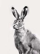 Wild Hare I