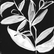 Quirky White Leaves I