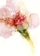Flower Passion II