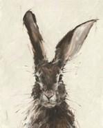 European Hare II