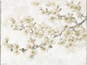 Neutral Cherry Blossom Composition I