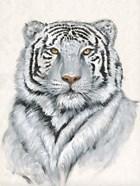 White Tiger I