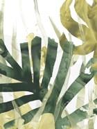 Palm Impression I