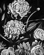 Enchanted Bloom II