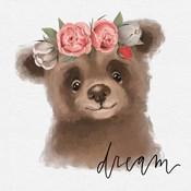 Dream Bear