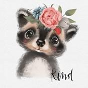 Kind Raccoon