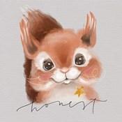 Honest Squirrel
