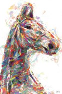 Horse in Color