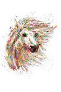 Horse in Color II