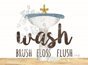 Wash - Brush - Floss - Flush