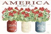 America Glass Jars