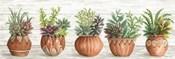 Terracotta Pots I