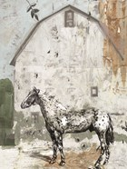 Barn with Horse