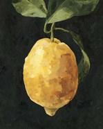 Dark Lemon I