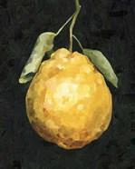 Dark Lemon II