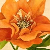 Copper Petals II