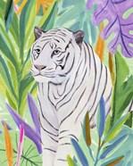 Tropic Tiger I